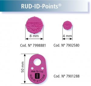 rud-id-points